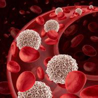 Ripristino e regolazione delle difese immunitarie e del sistema endocrino, ormonale